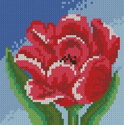 Маленький тюльпан DM-019 Алмазна мозаїка