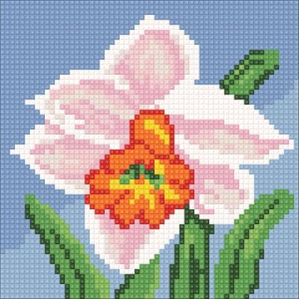 Маленький нарцис DM-026 Алмазна мозаїка