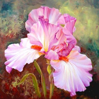 Рожевий ірис DM-030 Алмазна мозаїка