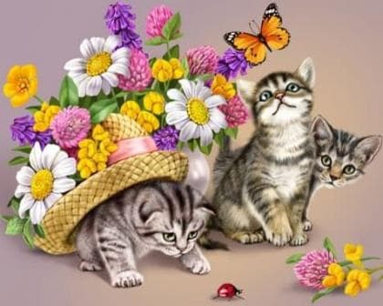 Грайливі кошенята DM-042 Алмазна мозаїка