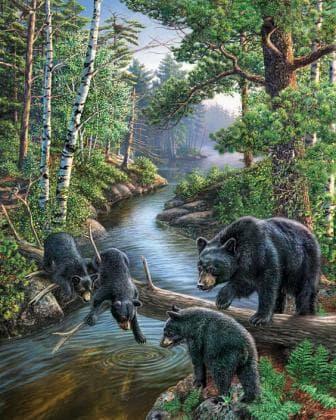 Ведмеді на полюванні DM-062 Алмазна мозаїка