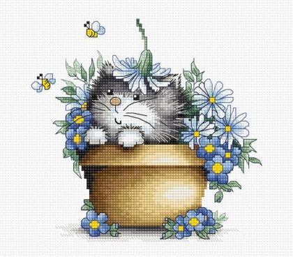 Кошеня в квітах B1048 Luca S
