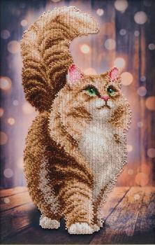 Мрійливий кіт