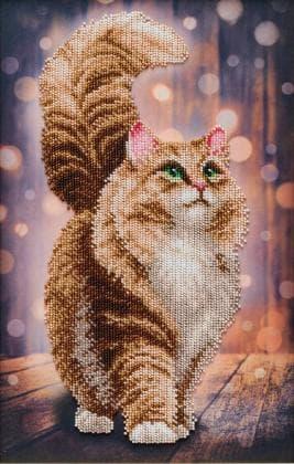 Мрійливий кіт Т-1342 ВДВ