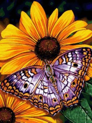 Метелик на квітах DM-177 Алмазна мозаїка