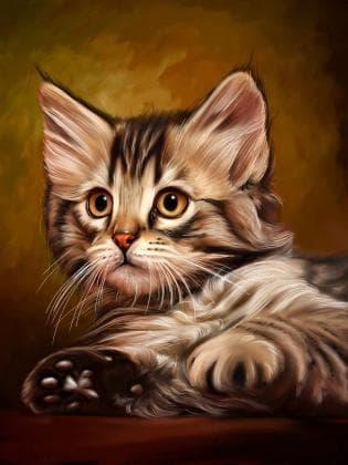 Миле кошеня DM-194 Алмазна мозаїка