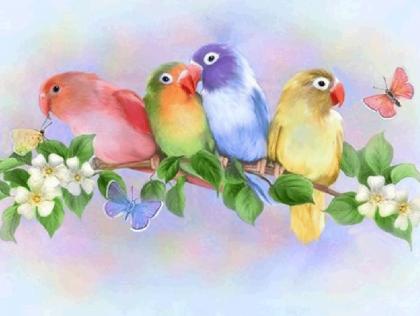 Яскраві папужки DM-202 Алмазна мозаїка