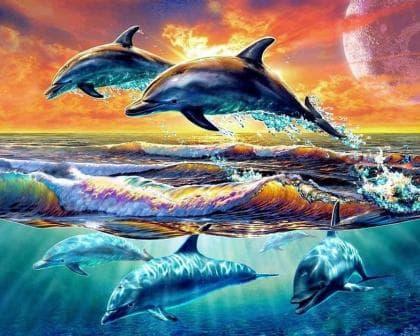 Ігри дельфінів DM-208 Алмазна мозаїка