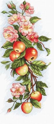 Композиція з яблуками В211 Luca S