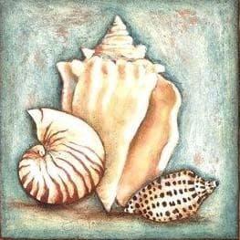 Морські мушлі DM-214 Алмазна мозаїка