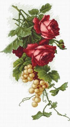 Червоні троянди і виноград В2229 Luca S