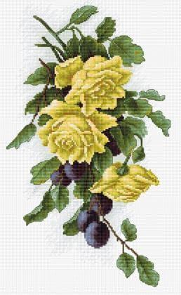 Жовті троянди зі сливами В2230 Luca S