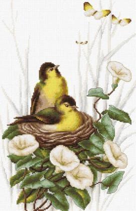 Пташки в гнізді