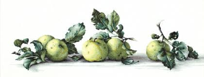 Натюрморт з яблуками В2259 Luca S