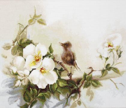 Пташка ВА2315 Luca S