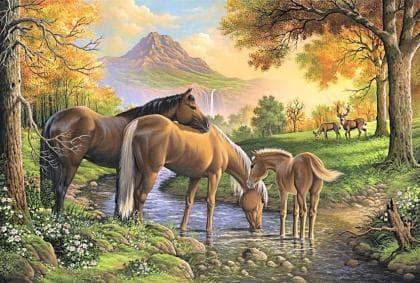 Сім'я коней DM-250 Алмазна мозаїка