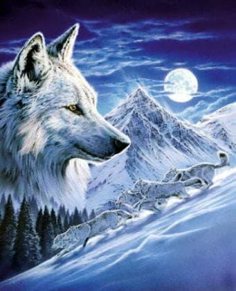Вовки в повний місяць DM-278 Алмазна мозаїка