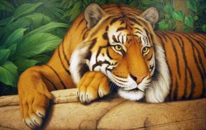 Мудрий тигр DM-289 Алмазна мозаїка