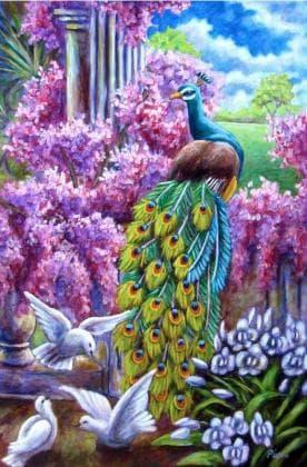 Павліни та голуби DM-302 Алмазна мозаїка