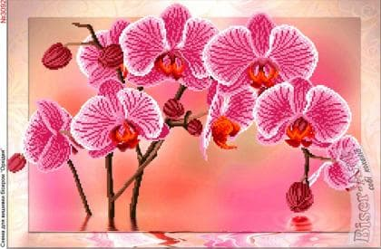 Орхідея 3092 Biser-Art