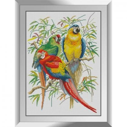Три папуги