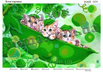 Коти-горошки