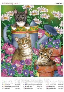 Котенята в квітах