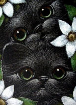 Зеленоокі кошенята DM-342 Алмазна мозаїка