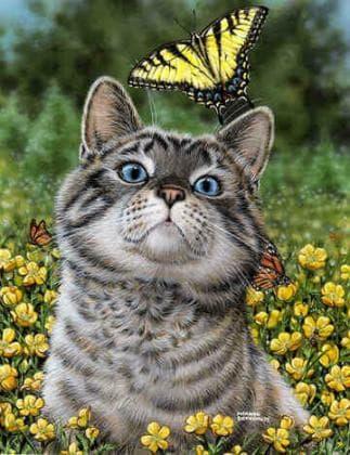 Кіт з метеликом DM-359 Алмазна мозаїка