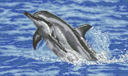 Дельфін DM-365 Алмазна мозаїка
