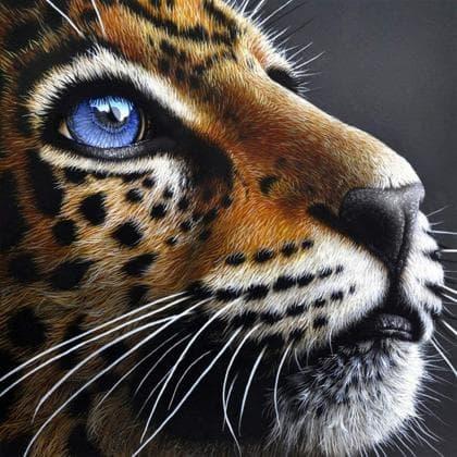 Погляд леопарда DM-399 Алмазна мозаїка