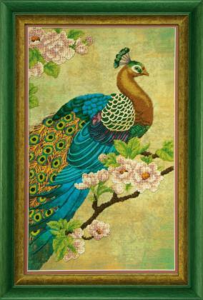 Райська птиця Б-748 Чарівна Мить