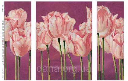Ніжні тюльпани DANA-411 DANA