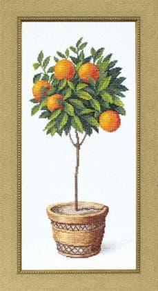 Апельсинове дерево ВТ-127 Crystal Art