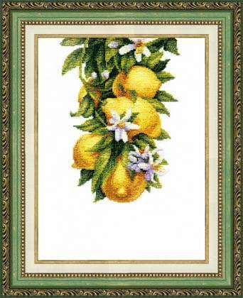 Корисні лимони ВТ-136 Crystal Art