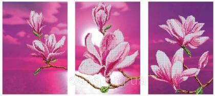Цвітіння магнолій DANA-44 DANA