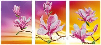 Цвітіння магнолій DANA-45 DANA