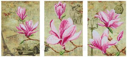 Цвітіння магнолій DANA-48 DANA