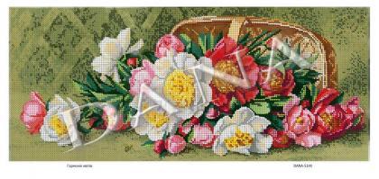 Гармонія квітів dana-5100 DANA