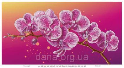 Гілка орхідеї DANA-510 DANA
