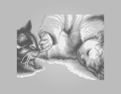Улюбленець ЧВ-5192 С Бісерок