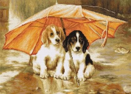 Двоє під парасолькою B550 Luca S