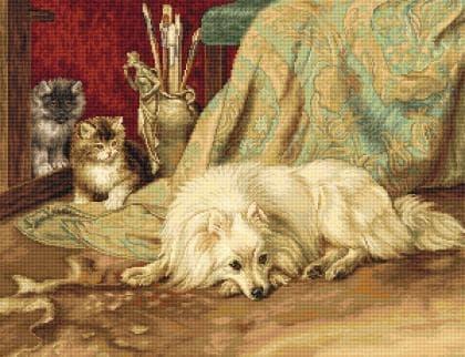 Пес та кішки B582 Luca S