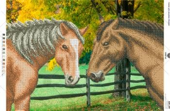 Коні в парку А2Н-037 VIRENA