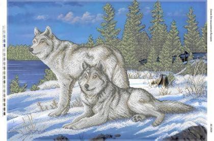 Вовки на снігу (част. виш) БС-2029 Сяйво БСР