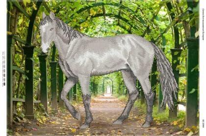 Кінь БС-2044 Сяйво БСР