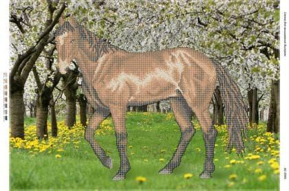 Кінь БС-2045 Сяйво БСР