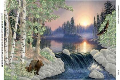 Дика природа (част. виш) БС-2057 Сяйво БСР
