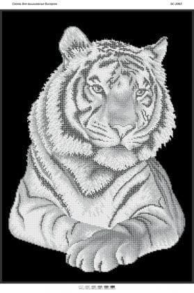 Тигр (част.виш) БС-2063 Сяйво БСР