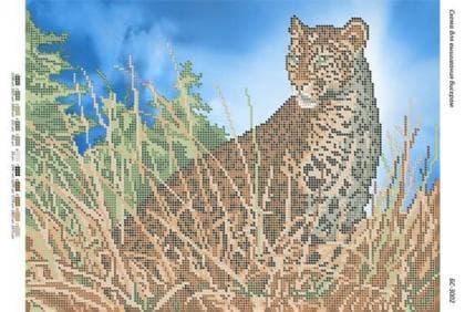 Леопард БС-3002 Сяйво БСР